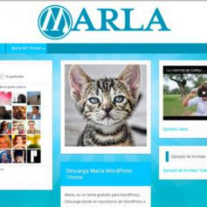 Marla WordPress Free Theme